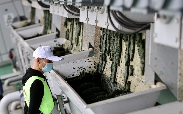 昆明滇池:已處置各類漂浮廢棄物675噸、藍藻351萬立方米