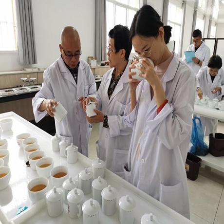 [品牌普洱]2020中國茶葉集群品牌聯盟普洱茶超級單品推薦活動成功舉行