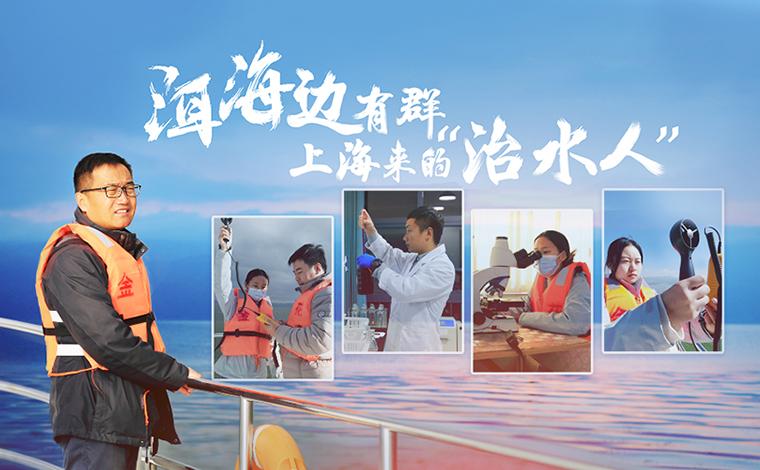 """洱海邊有群上海來的""""治水人"""""""