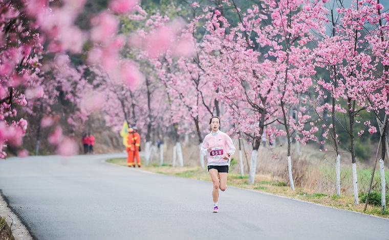 奔跑櫻花賽道 感受秀美螳川