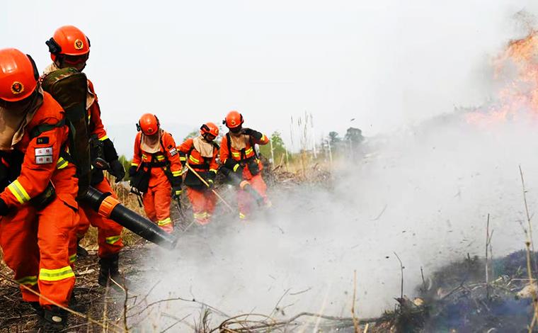 昆明市森林消防支隊開展集訓