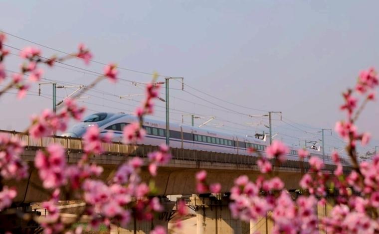 春日乘高鐵穿行雲南 邂逅滿目繁花