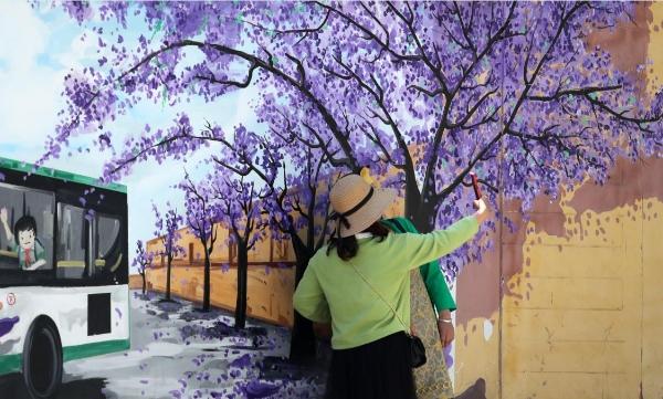 藍花楹主題公交開進昆明幸福賞花季